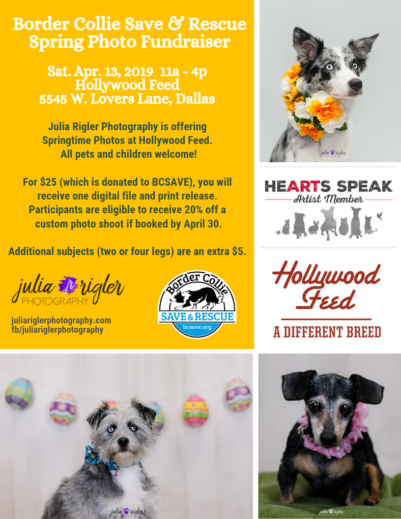 Spring Photo Shoot Fundraiser at Hollywood Feed in Dallas - 04/13