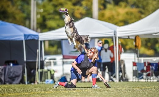 UFO World Cup Finals - 10/18 - 10/20